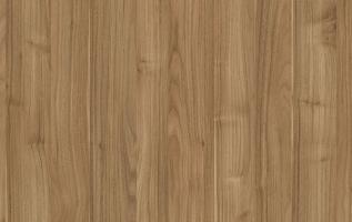 K-24 Dalia - sequoia