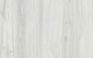 K62 - Plume blanche - Nobella